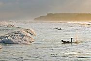 Ditch Plains Beach, Surfers, Montauk Cliffs, Ocean, New York, Long Island