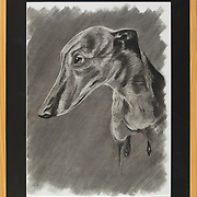 """Title: Beth Gelert or the Grave of a Greyhound<br /> Artist: Katherine Talley<br /> Date: 2014<br /> Medium: Charcoal<br /> Dimensions: 23 x 29""""<br /> Instructor: Brent Baggett<br /> Status: On Display<br /> Location: Cypress Creek Campus Commons, Building 1000"""