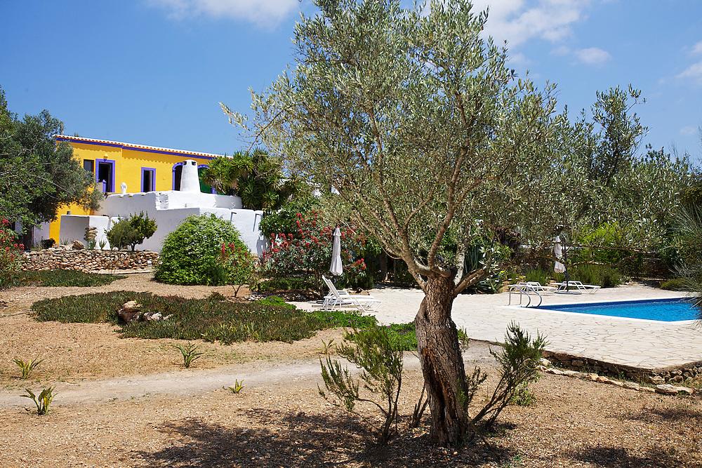 03/Julio/2013 Ibiza. Sant Joan<br /> Agroturismo Ca n'Escandell. <br /> Jardín y piscina<br /> <br /> ©JOAN COSTA