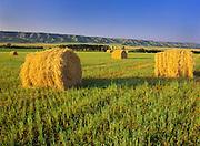BAles and hills<br /> Qu'Appelle Valley<br /> Saskatchewan<br /> Canada