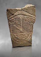 """Prehistoric  petroglyphs, rock carvings, of a geometric design carved by the the prehistoric Camuni people in the Copper Age around the 3rd milleneum BC, Stele """"Cemmo 10""""  excavated in 2000 from cut 35 of the prehistoric sanctuary Massi dei Cemmo Archaeological Site. Museo Nazionale della Preistoria della Valle Camonica ( National Museum of Prehistory in Valle Cominca ), Lombardy, Italy. Grey Art Background .<br /> <br /> If you prefer you can also buy from our ALAMY PHOTO LIBRARY  Collection visit : https://www.alamy.com/portfolio/paul-williams-funkystock/valcamonica-menhir-museum.html<br /> Visit our PREHISTORIC PLACES PHOTO COLLECTIONS for more  photos to download or buy as prints https://funkystock.photoshelter.com/gallery-collection/Prehistoric-Neolithic-Sites-Art-Artefacts-Pictures-Photos/C0000tfxw63zrUT4"""