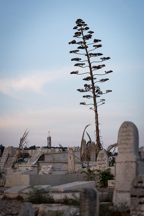 4 October 2018, Jerusalem: Yeusefiya cemetery.