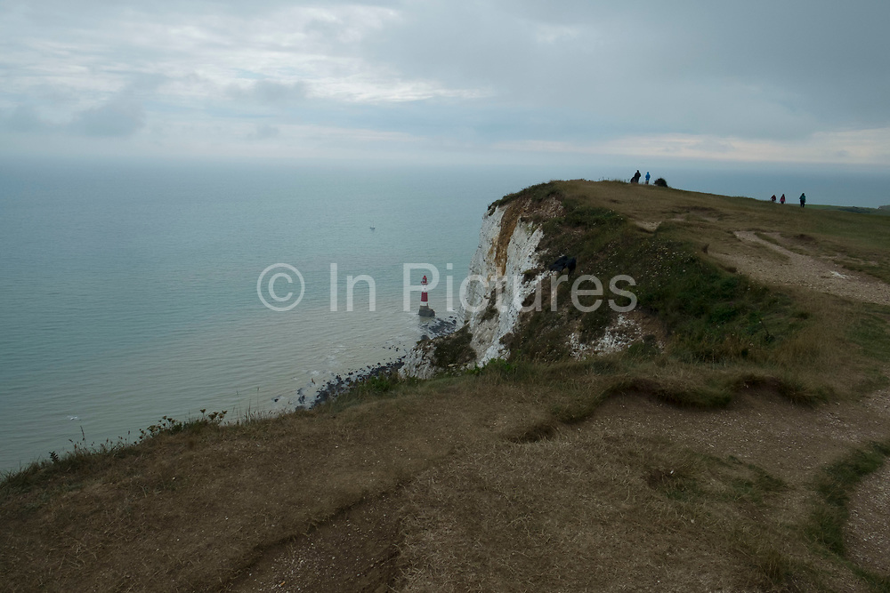 View out to sea and the English Channel from Beachy Head clifftop just outside Eastbourne, England, United Kingdom. Beachy Head is a chalk headland in East Sussex, situated immediately east of the Seven Sisters. The cliff is the highest chalk sea cliff in Britain, rising to 162 metres above sea level and is hence known as a prime location for suicides.