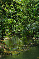The Pargo river in Corcovado National Park, the largest park in Costa Rica.