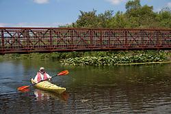 North America, United States, Washington, Bellevue, man kayaking under bridge in Mercer Slough Nature Park.  MR