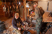 Hunters cleans the birds from their days shooting near Minot, North Dakota, United States. Prior to hanging the pheasants, grouse and ducks he has shot, the birds must have their guts removed. Failure to clean the birds organs will result in the insides rapidly going off and contaminating the game meat. It is an unpleasant and strong smelling job, but all part fo the process of having wild meat in the hunters freezers for the year ahead.