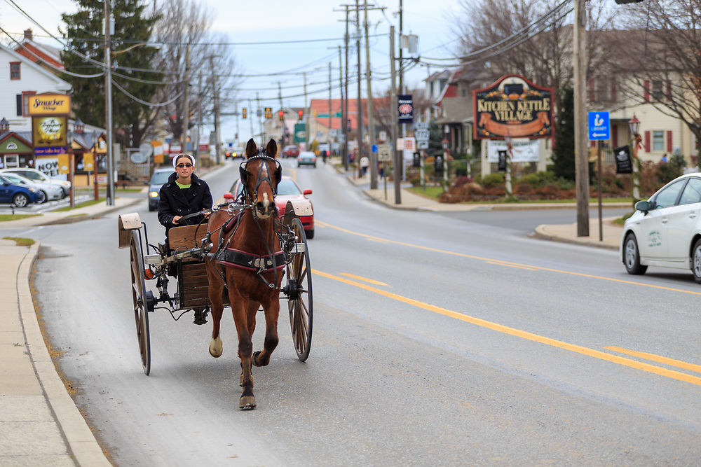 Intercourse, PA - December 1, 2014: An Amish woman drives a two wheel buggy on the Old Philadelphia Pike, the main street of the Lancaster County village.