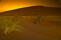 Sunrise, Dune One, Namib Desert, Namib-Naukluft National Park, near Sossusvlei, Namibia