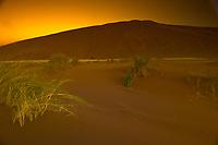 Sunrise, Dune One, Namib Desert, Namib-Naukluft National Park, near Sossusvlei, Namibia