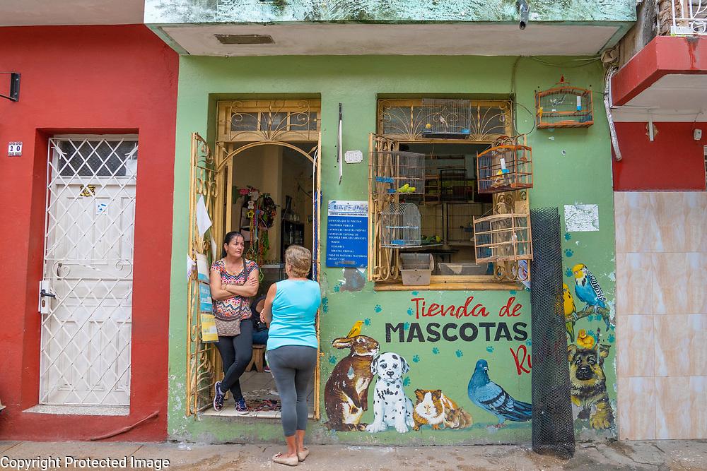 Sancti Spiritus Pet Shop Cuba 2020 from Santiago to Havana, and in between.  Santiago, Baracoa, Guantanamo, Holguin, Las Tunas, Camaguey, Santi Spiritus, Trinidad, Santa Clara, Cienfuegos, Matanzas, Havana