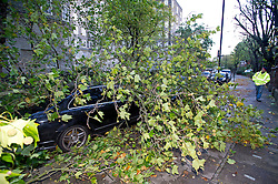 © London News Pictures. 28/10/2013 . London, UK.  A black Mercedes car trapped underneath a fallen tree branch blocking the road in St John's Wood, North London after strong winds swept the capital causing damage and travel disruptions. Gusts of 99mph have been recorded as a storm continues to batter parts of England and Wales. Photo credit : Ben Cawthra/LNP