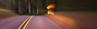 an abstract image of a road in the forest  approaching a road warning sign panorama