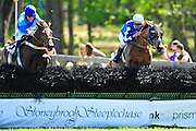 April 7, 2012 - Jacob Roberts and DURER take on Willie McCarthy and Royale to win Stoneybrook Steeplechase, Raeford NC