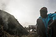 Charcoal preparation, Mali