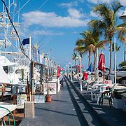 Whale Harbor Marina On Islamorada island Florida