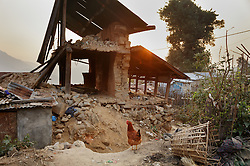 """A destroyed home in Kagati village. Village elders say around 400 homes and 300 cow sheds were destroyed in the 2015 earthquakes. """"People still cry,"""" said Charkraman Shreshta Balami, vice principal at the local school. <br /> <br /> The 2015 earthquakes devastated Nepal and left girls and women in an increasingly vulnerable position, leading experts to believe child marriage rates will increase over the coming years."""