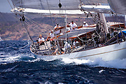 Windrose sailing in the Cannon Race at the Antigua Classic Yacht Regatta.