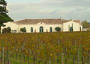Vineyard. Winery building. Chateau Petrus, Pomerol, Bordeaux, France