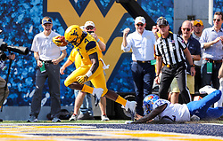 Oct 6, 2018; Morgantown, WV, USA; West Virginia Mountaineers running back Leddie Brown (4) catches a pass and runs for a touchdown during the first quarter against the Kansas Jayhawks at Mountaineer Field at Milan Puskar Stadium. Mandatory Credit: Ben Queen-USA TODAY Sports
