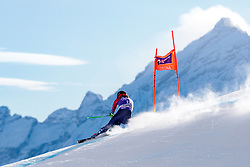 18.01.2018, Olympia delle Tofane, Cortina d Ampezzo, ITA, FIS Weltcup Ski Alpin, Abfahrt, Damen, 2. Training, im Bild Stacey Cook (USA) // Stacey Cook of the USA in action during the 2nd practice run of ladie' s downhill of the Cortina FIS Ski Alpine World Cup at the Olympia delle Tofane course in Cortina d Ampezzo, Italy on 2018/01/18. EXPA Pictures © 2018, PhotoCredit: EXPA/ Dominik Angerer