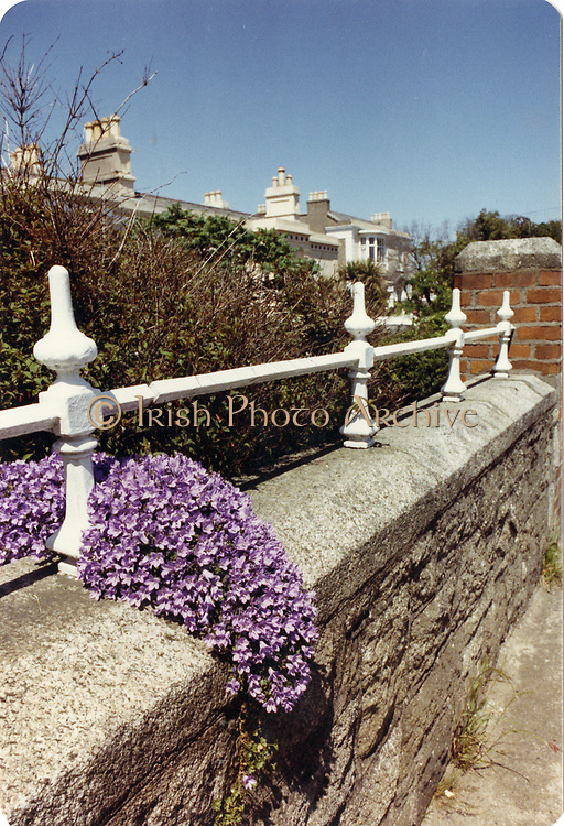 Old amateur photos of Dublin streets churches, cars, lanes, roads, shops schools, hospitals Trim County Meath Yellow Steeple, Castle, Keep, April 1992 sandymount