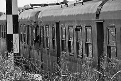 il treno continua a viaggiare, si intravede la mano del macchinista intento a segnalare qualcosa al capotreno qualche metro più avanti. Reportage che analizza le situazioni che si incontrano durante un viaggio lungo le linee ferroviarie delle Ferrovie Sud Est nel Salento