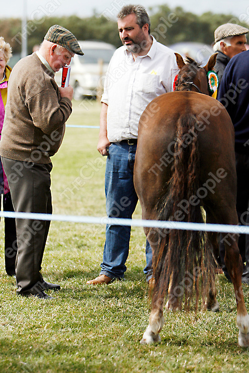 Patrick Mahoney and Ted O' Sullivan stop for a chat at the Mullagh show on Sunday.<br /><br /><br /><br />Photograph by Yvonne Vaughan.