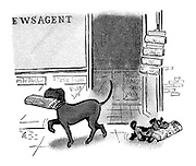 (Pure bred dog carries the Times newspaper home from a newsagent whilst a mongrel carries the Daily Sketch)