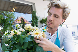 Mid adult man checking flowers for pest infestation