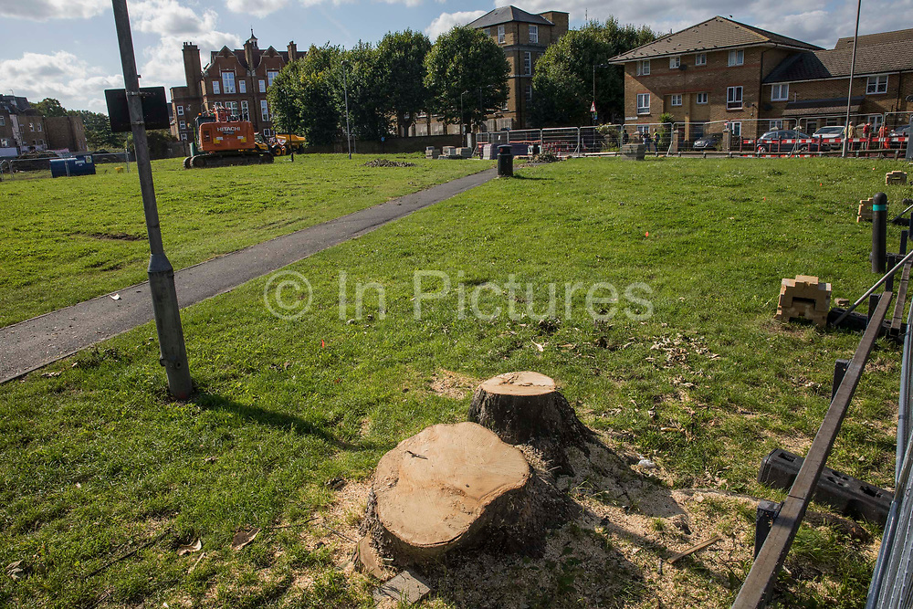 One of two trees felled on 11th August by Southwark Council on Peckham Green is pictured on 14th August 2021 in London, United Kingdom. Peckham Green, which Southwark Council plans to develop as public housing, is a 1.4-acre public park off Peckham High Street, one of the most polluted roads in London, in a borough which is ranked fifth-worst in London and eighth-worst in the UK for easy access to green space.