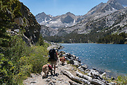 Woman backpacking with two dogs, hiking along the edge of Long Lake, Little Lakes Valley, John Muir Wilderness, Inyo National Forest, California