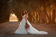 Beautiful bride at sunset in the olive grove at the Maples in Woodland, CA. Event Planning and florals by Paradise Parkway and wedding photography by Kristina Cilia Photography in Vacaville, CA