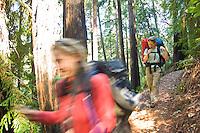 Backpackers hike the Pine Ridge Trail, Big Sur, California.