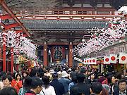 Japan Tokyo Asakusa Kannon Temple