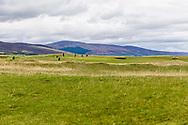 01-09-2018 Brora Golf Club in Brora, Sutherland, Scotland.