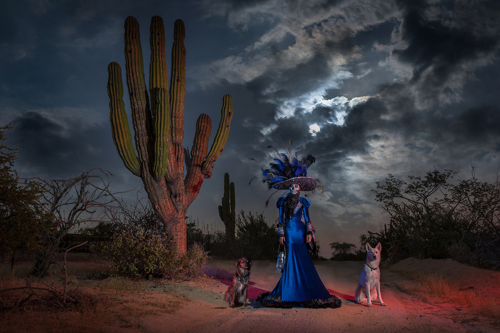 Mexico, Baja  California, American Dreamscapes, Across the Border (m)