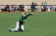 Chester, New York  - A SUNY Brockport outfielder catches a fly ball in a baseball game against Mount Saint Mary College at The Rock Sports Park on Feb. 26, 2012.