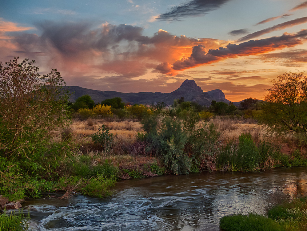 The Santa Cruz River in northwest Tucson is a riparian ecosystem that is under restoration. This river is one of the few that flows northward. Sombrero Peak can be seen in the background much of which resides in the Saguaro National Park.