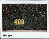 Wrigley Field instant film