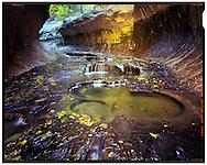 Zion National Park, UT 11/1/2015<br /> The Subway<br /> f/32, 2.5 minute exposure on Kodak Ektar film<br /> Alex Jones / www.alexjonesphoto.com