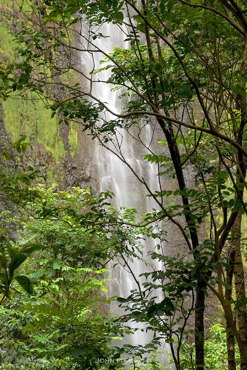 A waterfall in Haleakala National Park.