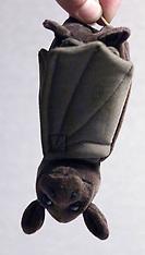 Toy Bat - 2000