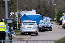 © Licensed to London News Pictures. 14/02/2021. Reading, UK. A forensic tent at the scene of a fatal stabbing in Reading, police were called to Managua Close in Caversham at approximately 00:45GMT where police located a 24-year-old with a stab wound to the chest, the man died at the scene. Photo credit: Peter Manning/LNP