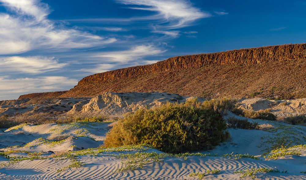 Late afternoont landscape, February, Scorpion Bay, San Juanico, Baja, Mexico