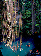 People swim in the fresh, cool waters of the sacred blue cenote (sink hole) at the Ik Kil Eco-archeological Park (cq) near Piste, Yucatan, Mexico, on May 22, 2007. Tree roots hang about 80 feet to the water. Ik Kil is a popular cooling-off spot for tourists visiting nearby Chichen Itza.  (© 2007 Cindi Christie)