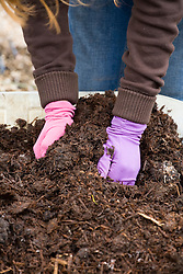 Handful of compost/mulch