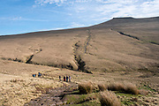 A group of adult and child ramblers walk along the path towards the summit of Pen Y Fan Mountain in Brecon Beacons National Park, Wales, Powys, United Kingdom. Pen Y Fan is the highest point in the Brecon Beacons hill and mountain range in South Wales. The National Park was established in 1957 due to the spectacular landscape which is rich in natural beauty.  (photo by Andrew Aitchison / In pictures via Getty Images)