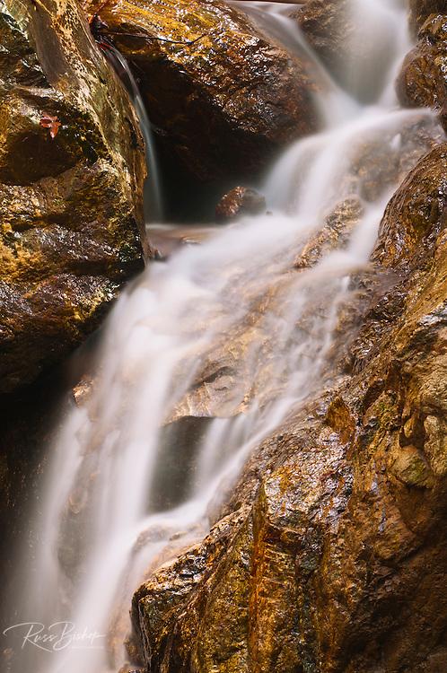 Pfeiffer Falls, Pfeiffer Big Sur State Park, Big Sur, California