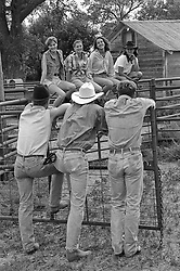 Three cowboys watching four girls sitting on a fence