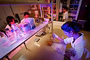 Belo Horizonte_MG, Brasil...LAR - Laboratorio de Agentes Recombinantes da Universidade Federal de Minas Gerais (UFMG) no predio do ICB (Instituto de Ciencias Biologicas) em Belo Horizonte, Minas Gerais...LAR -  Recombinant Agents Laboratory in the Federal University of Minas Gerais (UFMG) in building of ICB (Institute of Biological Sciences) in Belo Horizonte, Minas Gerais...Foto: NIDIN SANCHES / NITRO